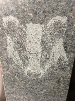 Badger design
